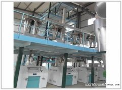 Chili Processing Line Equipment